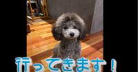 Ema3_20210120013801