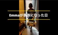 Ematoro21019